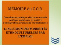 Mémoire inclusion des minorités ethnoculturelles par l'emploi